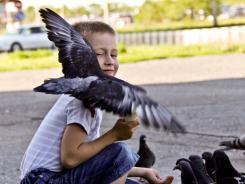 1 Вадим и голуби